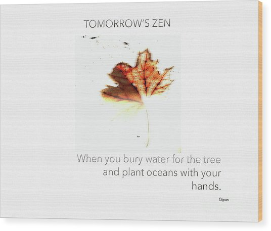 Tomorrow's Zen  Wood Print by Steven Digman