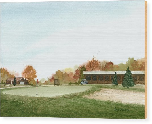 Tom's  Golf Course Wood Print by Sean Seal