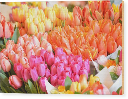 Tons Of Tulips Wood Print