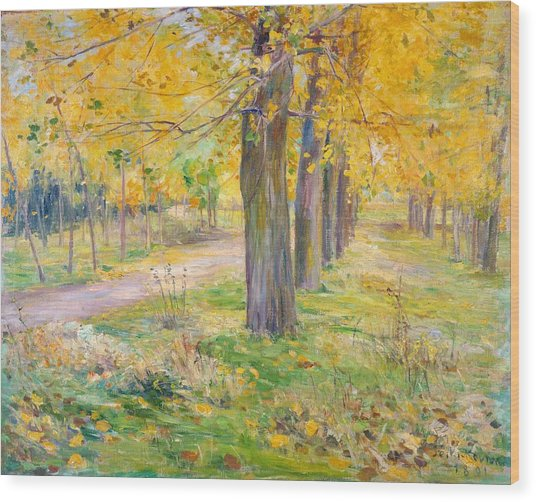 Top Quality Art - Poplar Yellow Leaves Wood Print