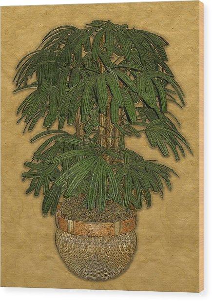 Topiary 4 Wood Print by Carol Peck