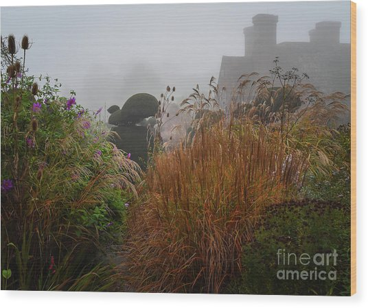 Topiary Peacocks In The Autumn Mist, Great Dixter 2 Wood Print