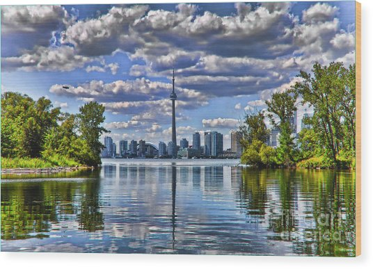 Toronto City View Wood Print by Elaine Manley
