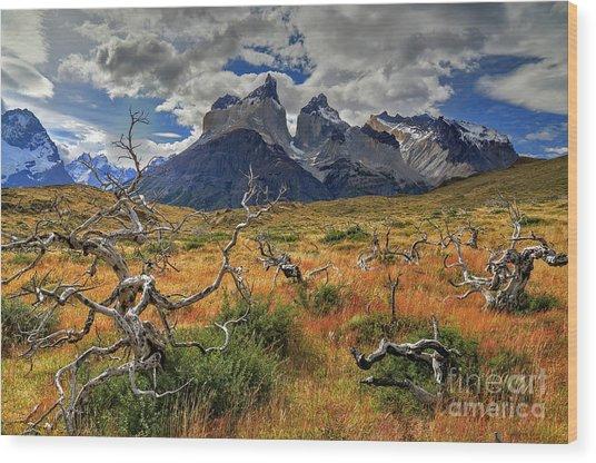 Torres Del Paine 18 Wood Print