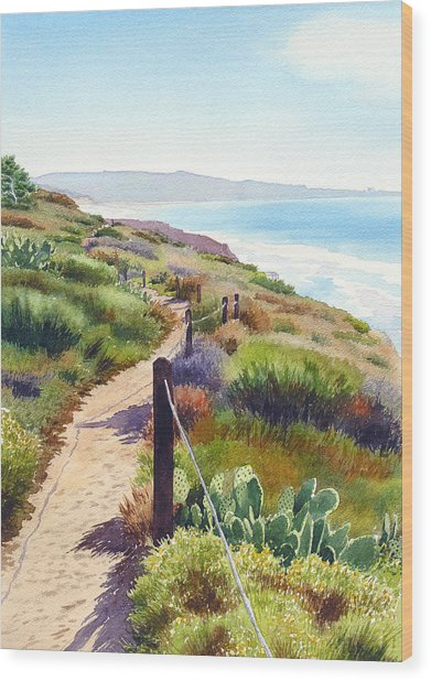 Torrey Pines Guy Fleming Trail Wood Print