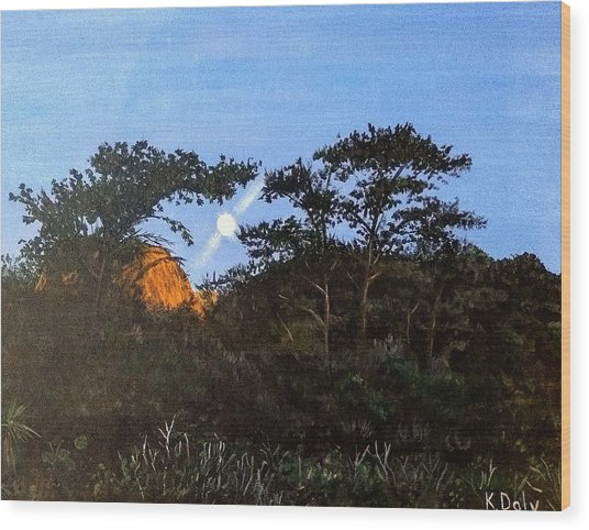 Torrey Pines In The Morning Wood Print