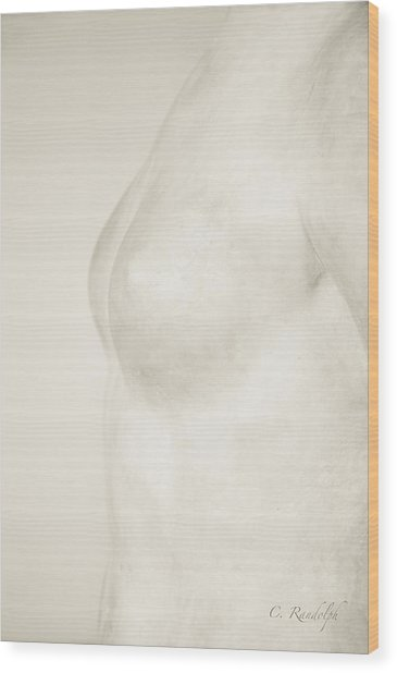 Torso Suggested Wood Print