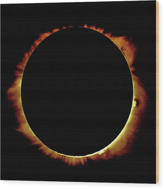 Totality Over Processed Wood Print