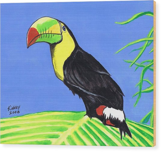 Toucan Bird Wood Print by Jay Kinney