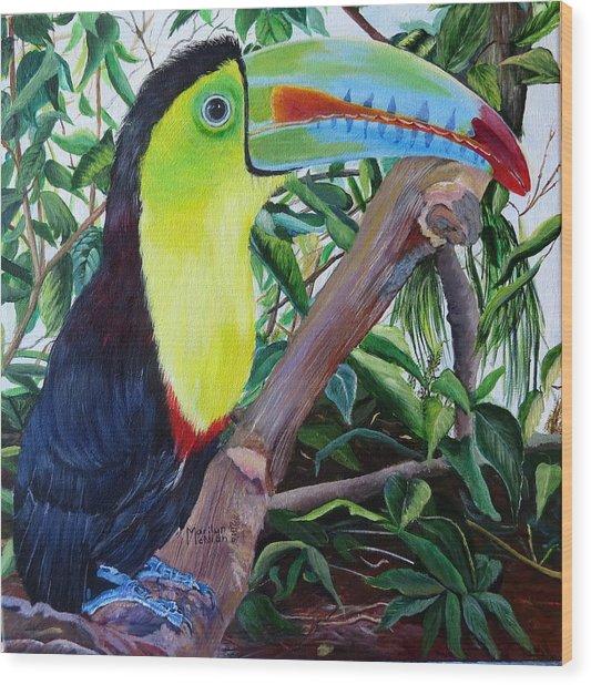 Toucan Portrait Wood Print