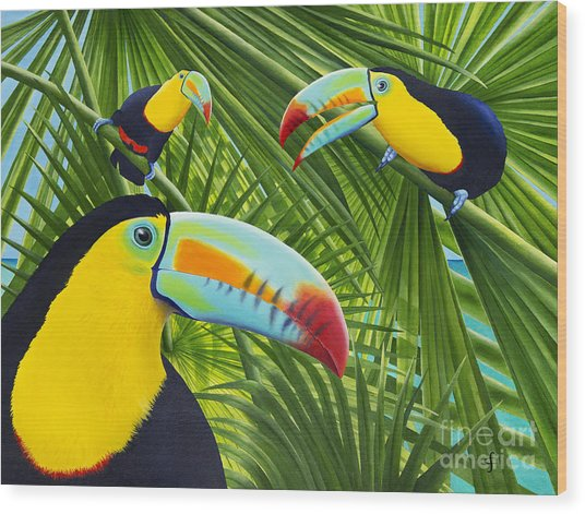 Toucan Threesome Wood Print