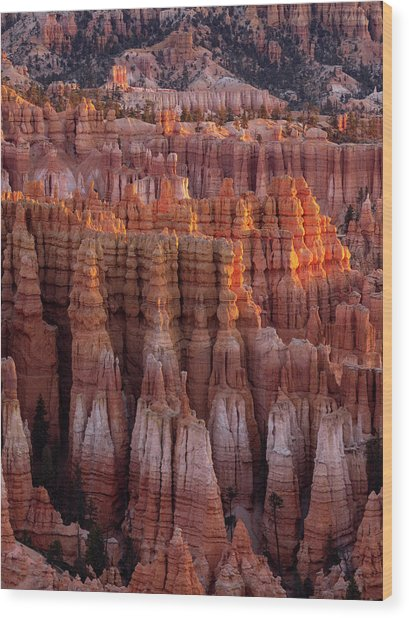 Towers Of Bryce Wood Print
