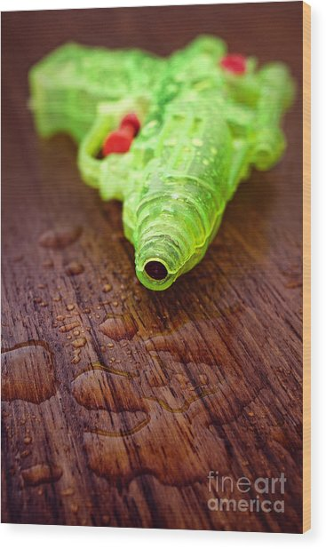 Toy Water Pistol Wood Print