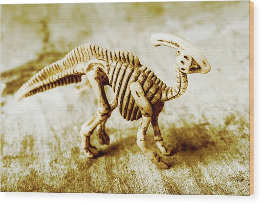 Toys And Artefacts Wood Print