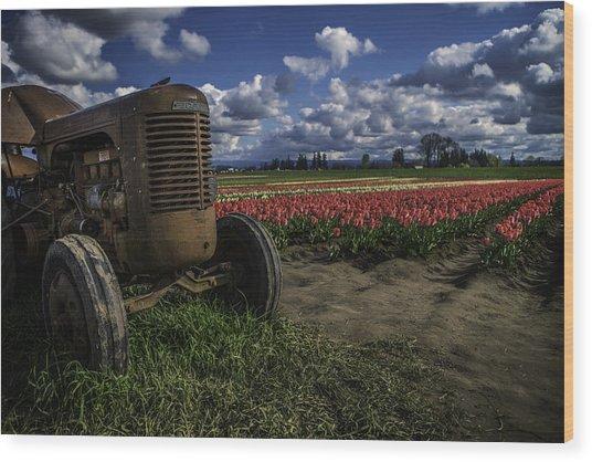Tractor N' Tulips Wood Print