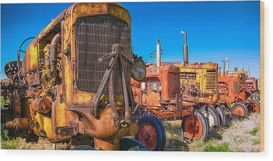 Wood Print featuring the photograph Tractor Supply by Daniel George