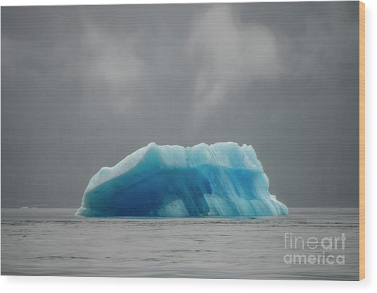 Iceberg - Tracy Arm Fjord Wood Print