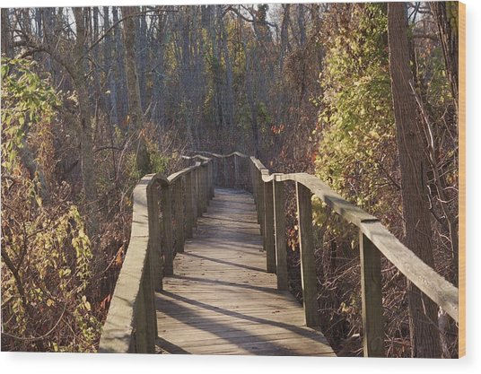 Trail Bridge Wood Print