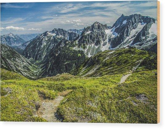 Trail To Stehekin Wood Print