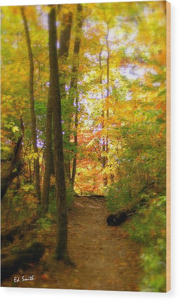 Trailhead Light Wood Print