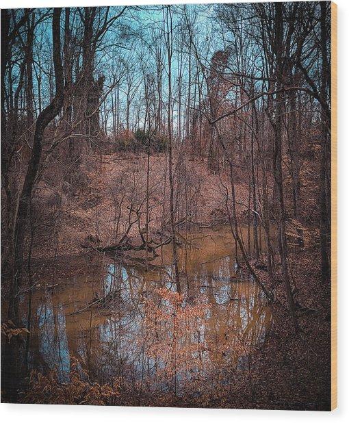 Trailing Creek Wood Print