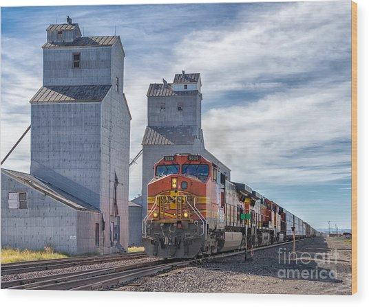 Train And Grain Elevator Wood Print