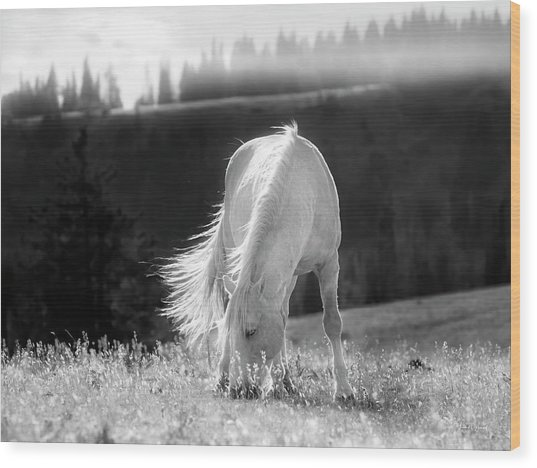 Wood Print featuring the photograph Tranquil Black And White 3 by Leland D Howard