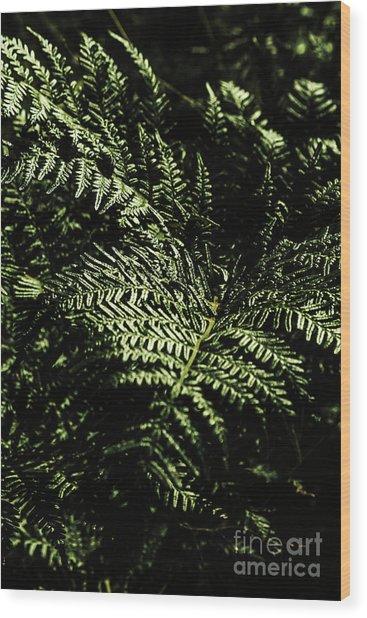 Tranquil Botanical Ferns Wood Print