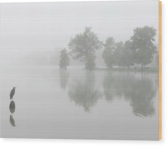 Tranquil Morning  Wood Print