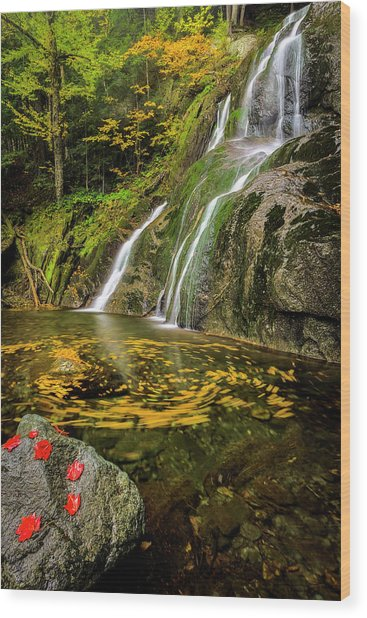 Tranquil Waters Wood Print