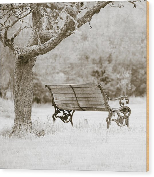 Tranquility Wood Print