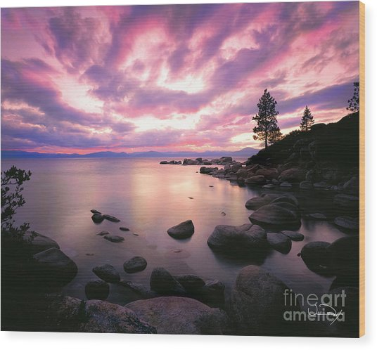 Tranquility  Wood Print by Vance Fox