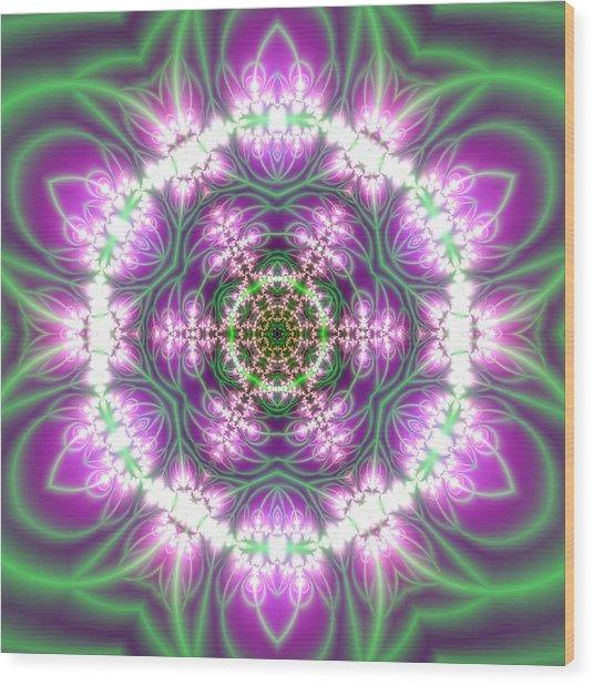 Transition Flower 6 Beats 3 Wood Print