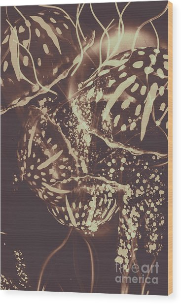 Translucent Abstraction Wood Print