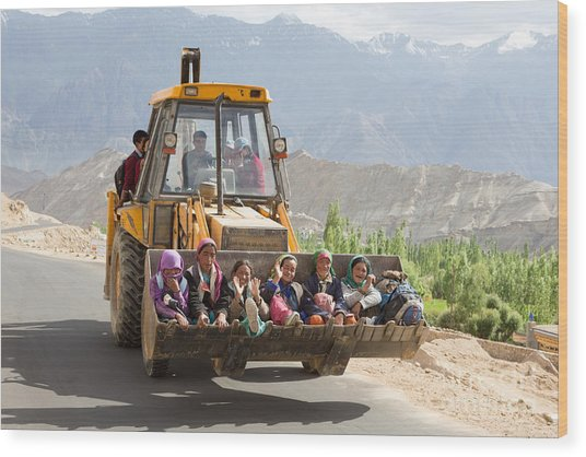 Transport In Ladakh, India Wood Print