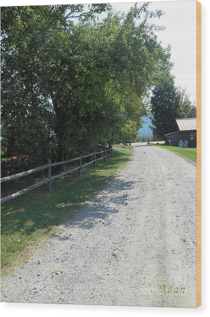 Trapp Family Lodge Rustic Road Wood Print
