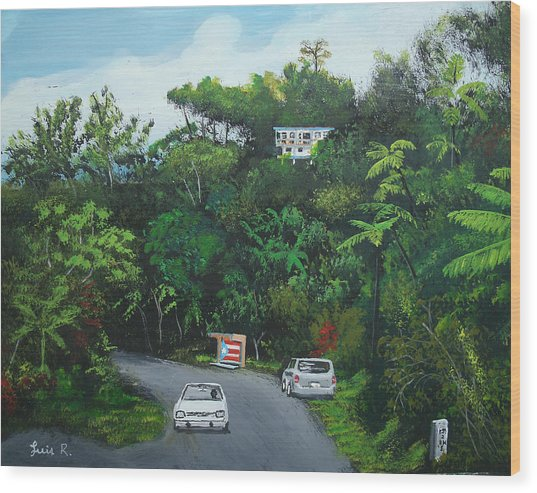 Traveling In Adjuntas Mountains Wood Print