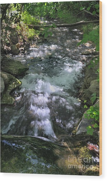Travertine Creek Wood Print