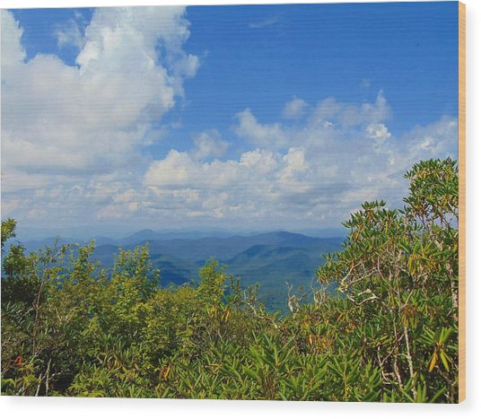 Tray Mountain Summit - South Wood Print