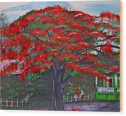 Treasures Of Puerto Rico Wood Print