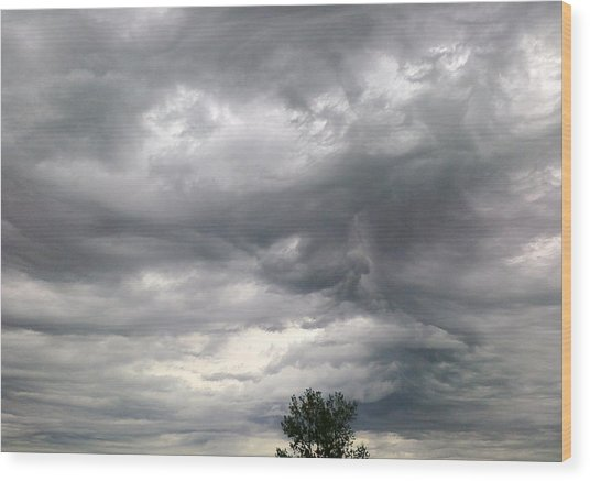 Tree And Cloud Wood Print by Stephen Doughten