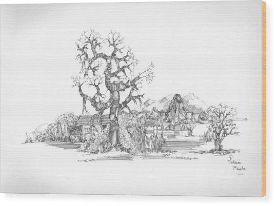 Tree And Some Rocks Wood Print by Padamvir Singh