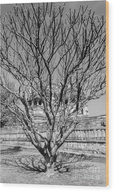 Tree And Temple Wood Print