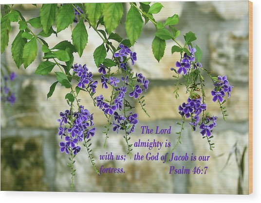 Tree Branches With Purple Flowers Ps.46 V 7 Wood Print