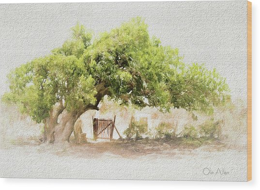 Tree By The Gate Wood Print