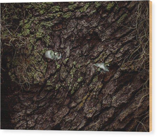 Tree Eyes Wood Print