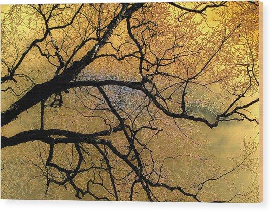Tree Fantasy 7 Wood Print
