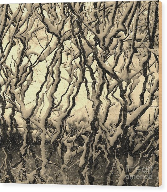 Tree Frenzy Wood Print