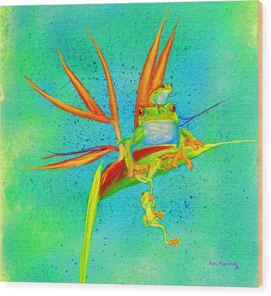 Tree Frog On Birds Of Paradise Square Wood Print