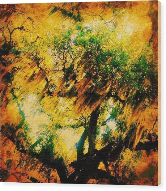 #tree #green #yellow #colourful #sc Wood Print